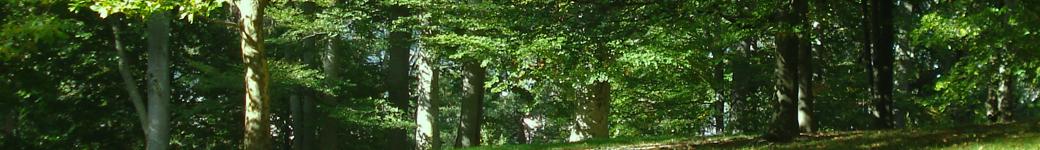 Groupe des Elus Europe Ecologie